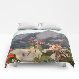Fall in Boulder Comforters