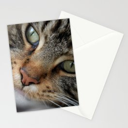 Tell me what the lion said next? Stationery Cards