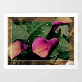 Power in a Flower  Art Print