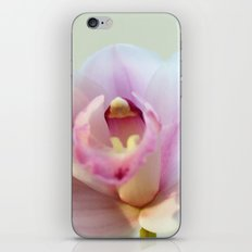 Cymbidium orchid 9770 iPhone & iPod Skin