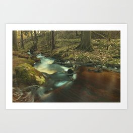 Getå Ravine Art Print