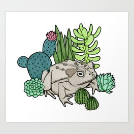 Toad with Succulents Art Print