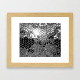 Lace Curtain 4 Framed Art Print