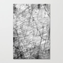 Cracks in timber Textures 3 Canvas Print