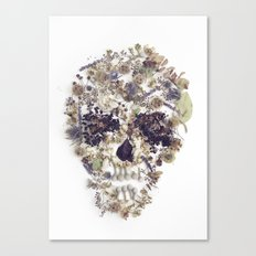 Dead flowers Canvas Print
