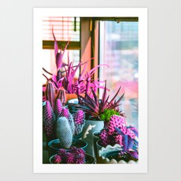 Love for Cactuses Art Print