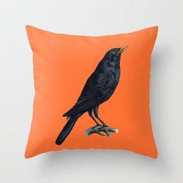 Vintage Raven Throw Pillow