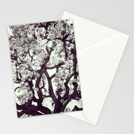 White Tree Blossom Stationery Cards