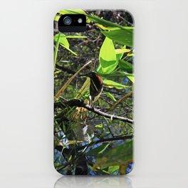 A Green Heron in Corkscrew-vertical iPhone Case