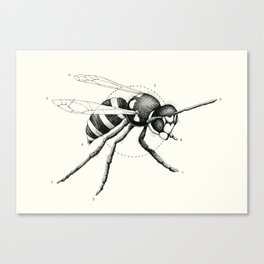 'Wildlife Analysis I' Canvas Print