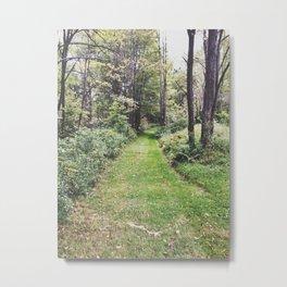 Woods Path Metal Print