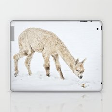 Hello...... Are you cold? Laptop & iPad Skin