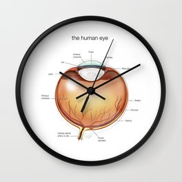 Human Eye Anatomy Illustration Wall Clock