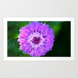 PAPOW! Purple Macro Flower Art Print