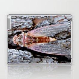 Annual Female Cicada Laptop & iPad Skin