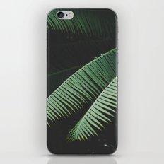 Night in the Tropics iPhone Skin