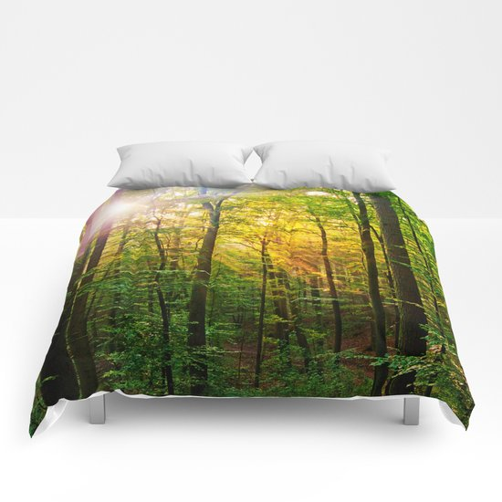 Morning sun in the forest Comforters