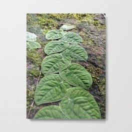 Magic leaves Metal Print