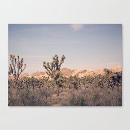Scenes from Joshua Tree, No. 2 Canvas Print
