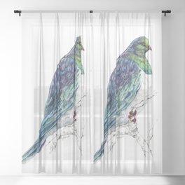 Mr Kereru, New Zealand native wood pigeon Sheer Curtain