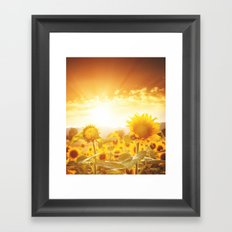 majestic sunflower field Framed Art Print