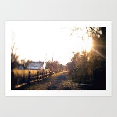 Trails in Brick, NJ Art Print
