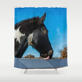 That's Disgusting Shower Curtain