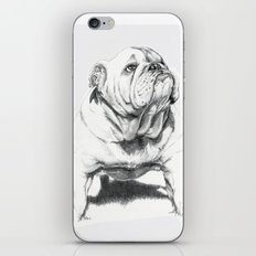 Dogs: Bull Dog iPhone & iPod Skin