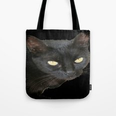 Black Cat Isolated on Black Background Tote Bag
