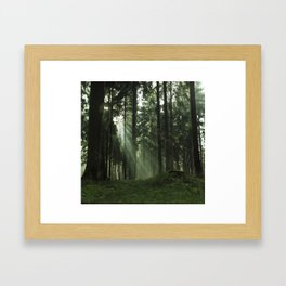 Forrest one Framed Art Print