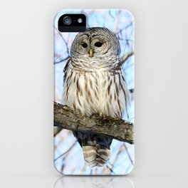 Without Scorn iPhone Case