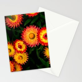Plant Patterns - Flowery Fireworks Stationery Cards