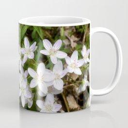 Spring Beauty 10 Coffee Mug