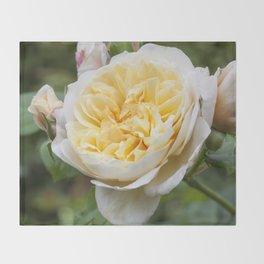 Old English rose Throw Blanket