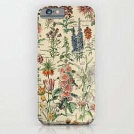 French Vintage Flowers Chart Adolphe Millot Fleurs Larousse Pour Tous Poster  iPhone Case