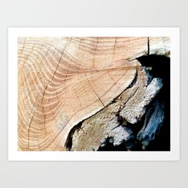 WOOD TEXTURE II Art Print