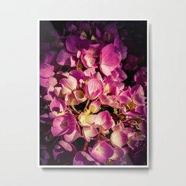 Flowers 5 Metal Print