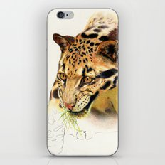 Clouded Panther iPhone & iPod Skin