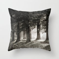 Summers' End Throw Pillow