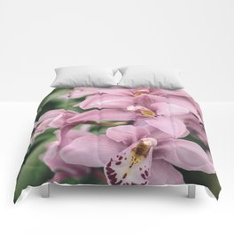 Orchid cascase Comforters