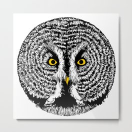Round Owl Metal Print