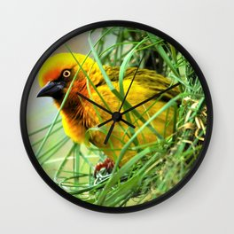 Amazing Lovely Little Feathered Creature In Greenery Zoom UHD Wall Clock