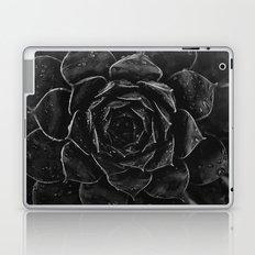 Sempervivum #1 Laptop & iPad Skin