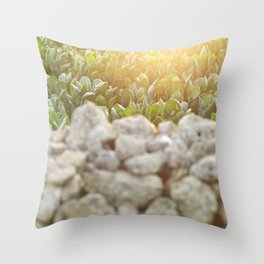 Sunset in Italy, fine art, landscape photo, Sicily photography, Puglia, Apulia, nature lover, love Throw Pillow
