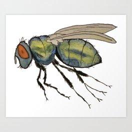 bummed out fly Art Print
