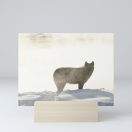 Yellowstone National Park - Wolf and Hot Spring Mini Art Print