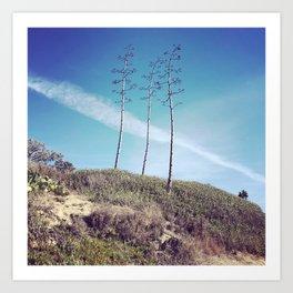 San Clemente Trees Art Print