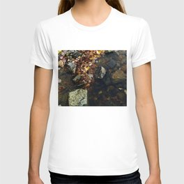 Autumn Colors in the Water T-shirt