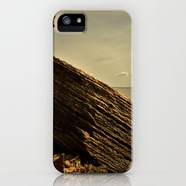 Togetherness iPhone Case