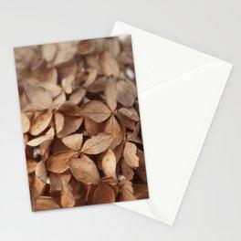 Spring Bloom XXIV Stationery Cards